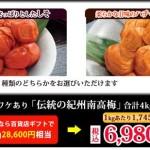 伝統の紀州南高梅 4kgセット(ワケあり)が激安価格!