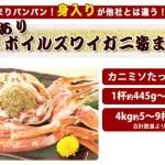 ボイルズワイガニ 4kgセット(ワケあり)が激安!