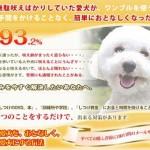 ワンブルが今なら5,000円引きの大特価!