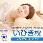 リビングインピースのいびき枕がカバー付き+送料無料!